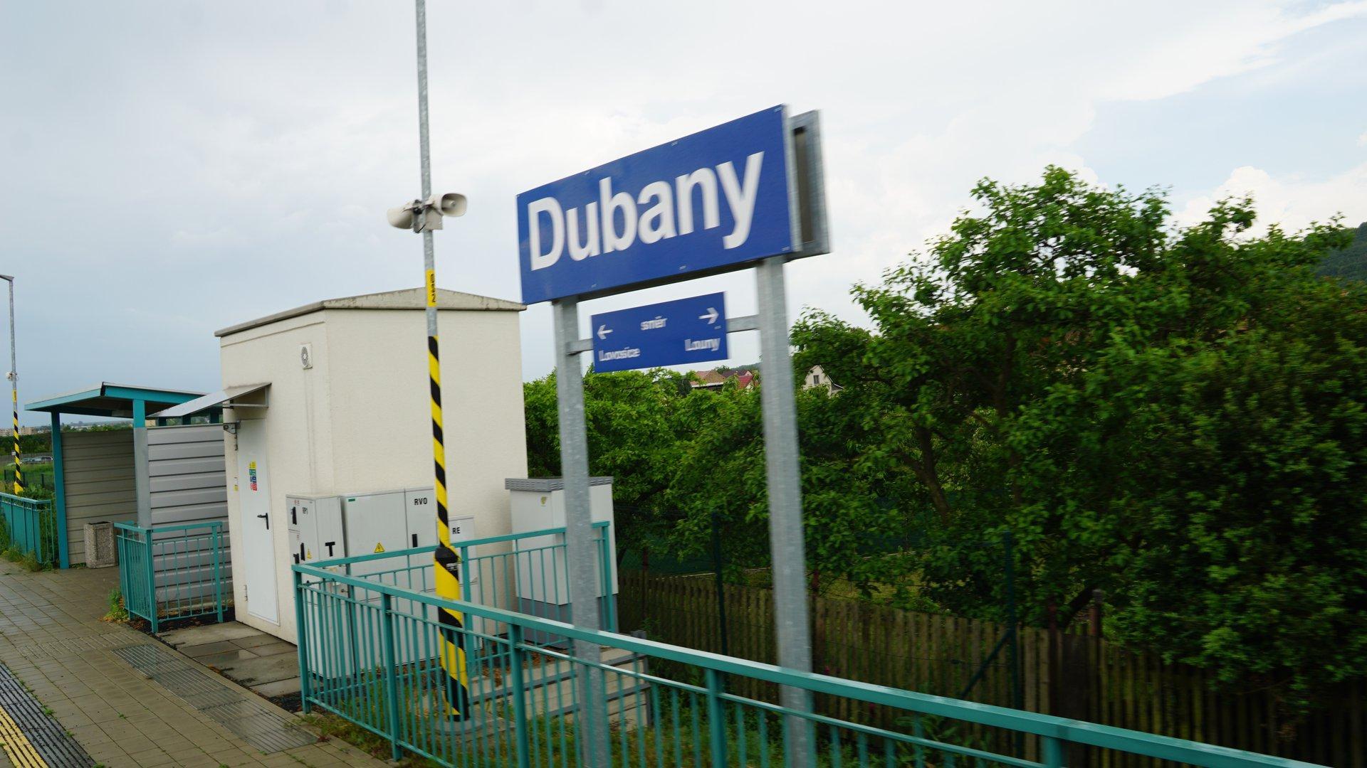 Dubany