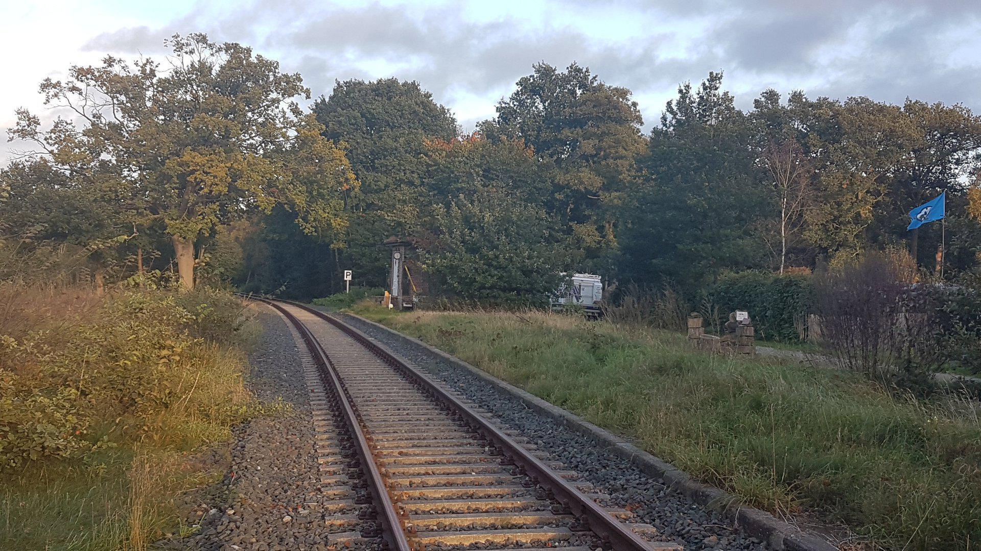 Weyermoor